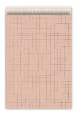 Cadeauzakjes Wishing you the best roze/goud/blush 17 x 25