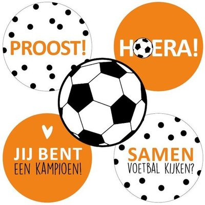 Sticker EK Voetbal