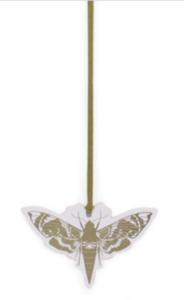 Cadeaulabel Insects Moth