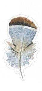Cadeaulabel Feather blue