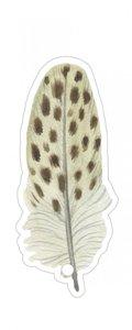 Cadeaulabel Feather beige dots