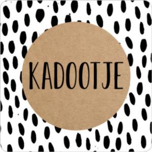 Sticker Kadootje vierkant (dots)