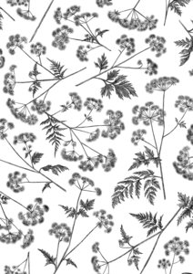 Vloeipapier Dotted wildflower black