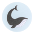 Sticker Whale mixed_
