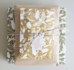 Cadeaulabel Insects Moth_